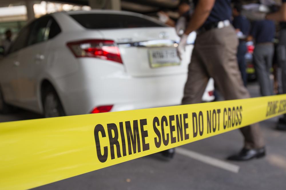 Image for Mock Crime Scene Investigation.