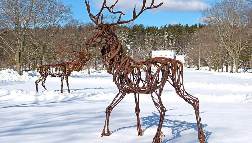 Ram sculpture in the snow
