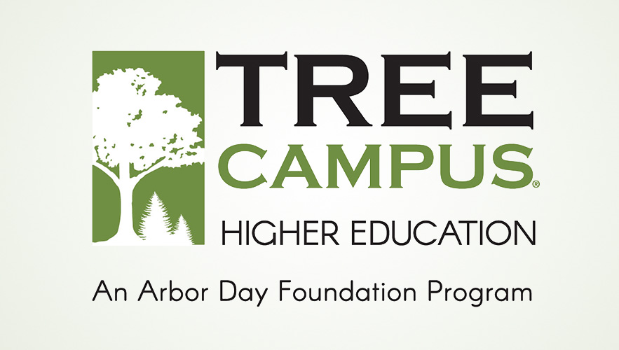 TreeCampus HigherEd Logo