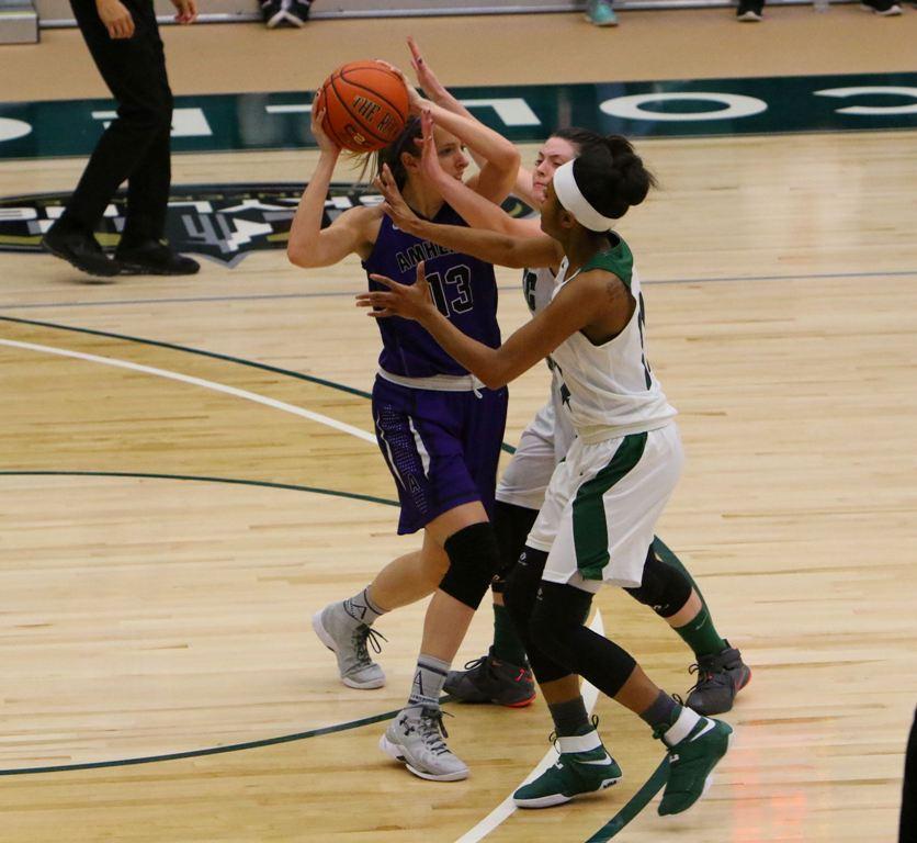 Image for Farmingdale Women's Basketball: New Beginnings.
