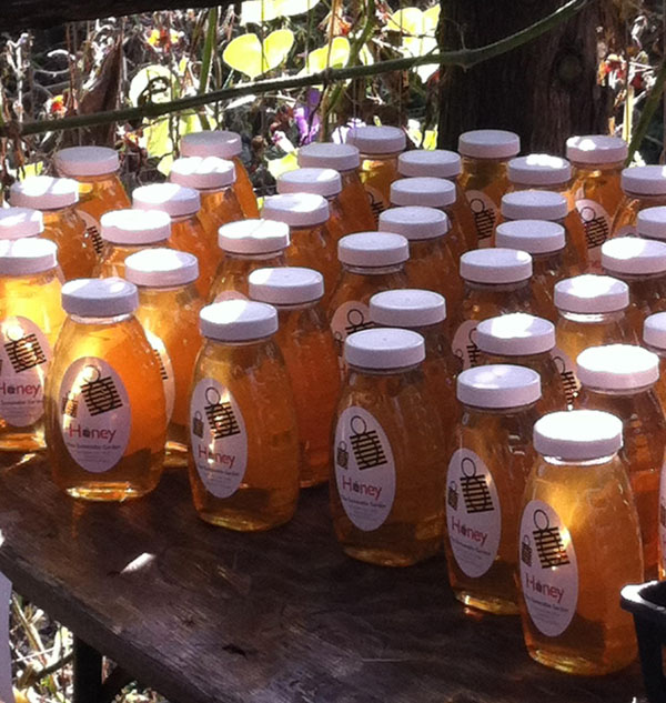 Sustainable Garden honey